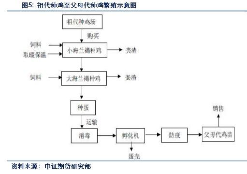 案例分析四个步骤